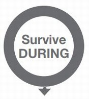 Survive During with Arrow