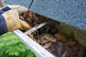Hand Cleaning Debris from Gutter